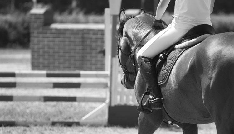 Saddle Club Charities
