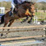 Saddle Club Facilities