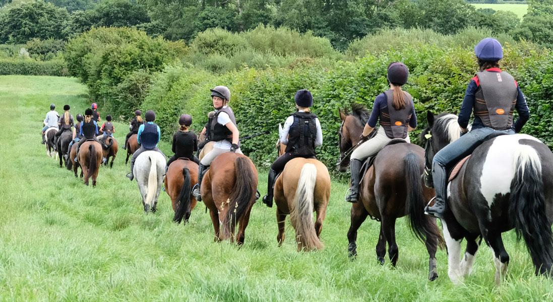 Pony Club | Saddle Club