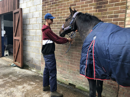 RAC Saddle Club Changing Lives Through Horses